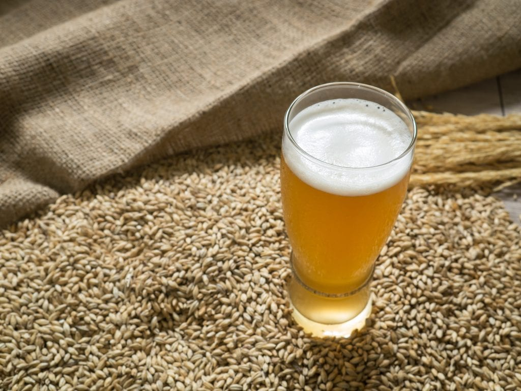 Does beer Use Yeast