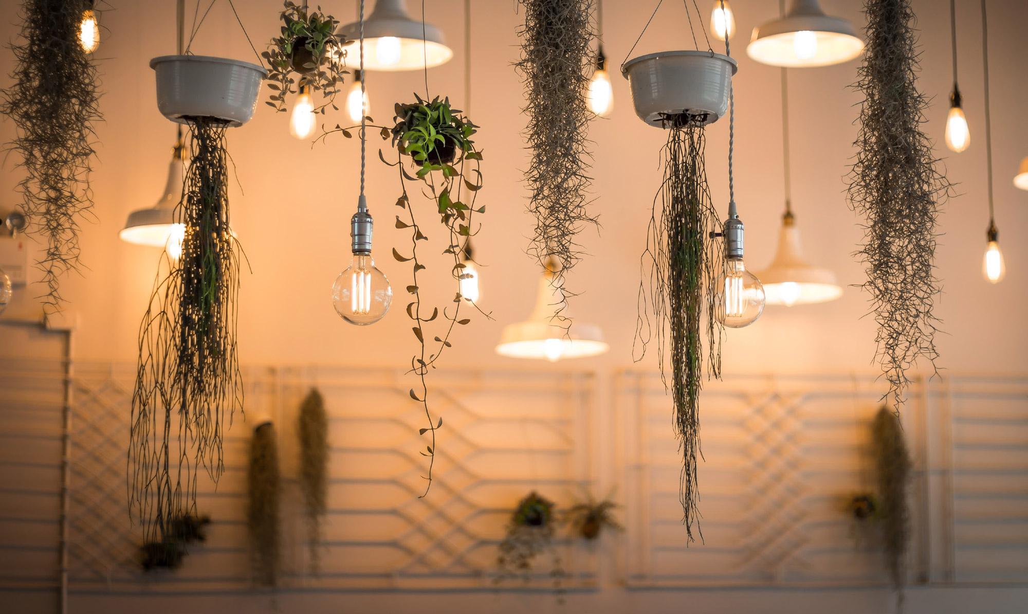 Greener lighting solution, British Independent Retailers Association