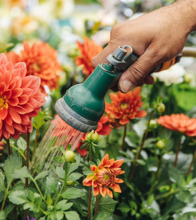 Independent businesses getting into gardening