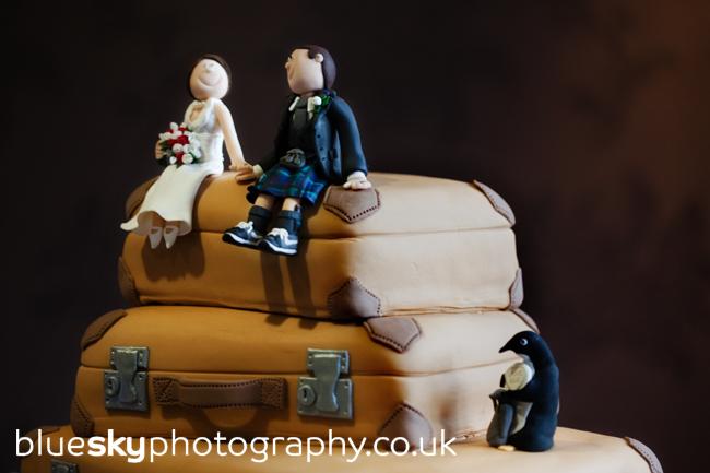 Sarah & Ian's cake