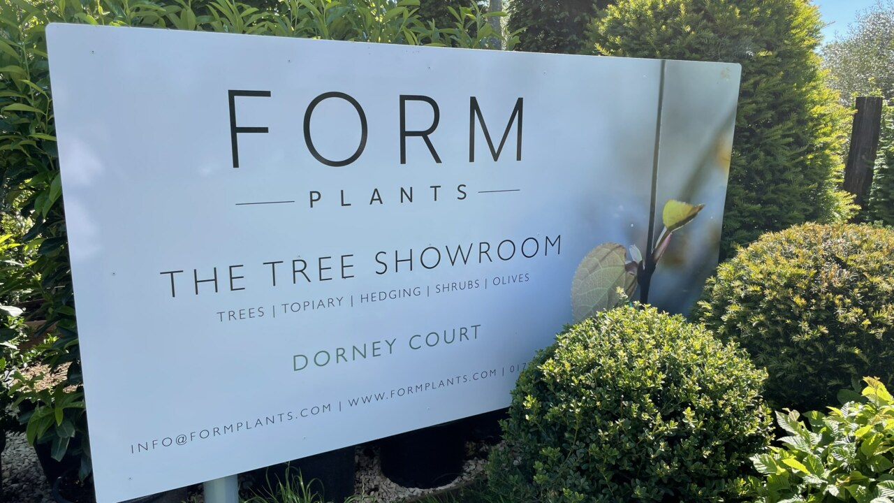 form-plants-showroom_3840x2160_acf_cropped