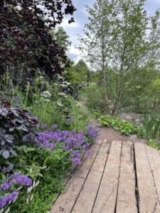 form-plants-garden-for-a-green-future-hampton-court
