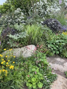 garden-for-a-green-future-form-plants