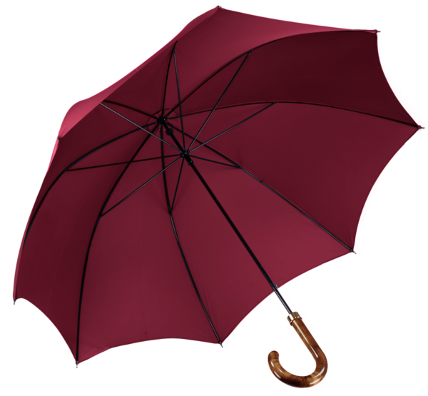 menswear-accessories-walking-umbrella-wine-1