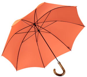 Cad & The Dandy Walking Umbrella in Orange