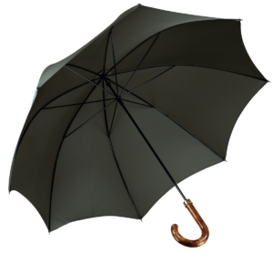 Cad & The Dandy Walking Umbrella in Racing Green