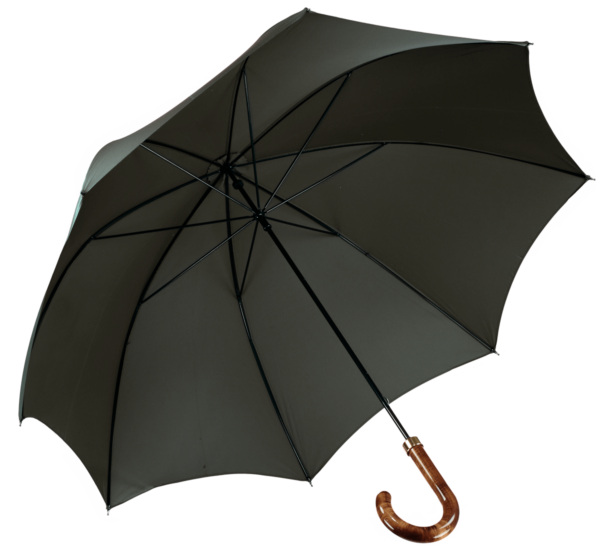 menswear-accessories-walking-umbrella-racing-green-1