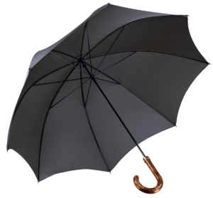 Cad & The Dandy Walking Umbrella in Grey
