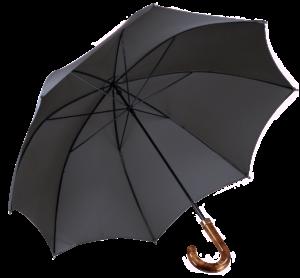 Cad & The Dandy Walking Umbrella in Grey