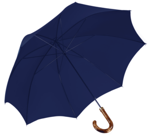 french-blue-walking-umbrells