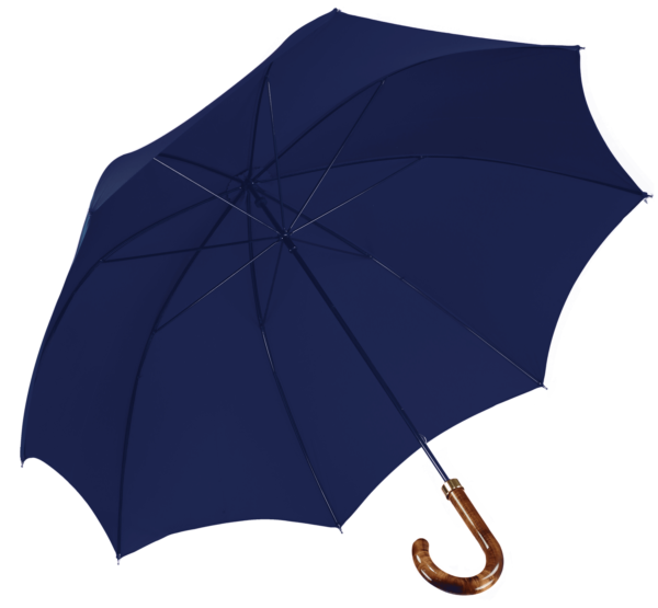 french-blue-mens-walking-umbrella