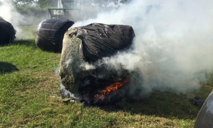 Up to 40 bales damaged in Somerset farm vandal attack