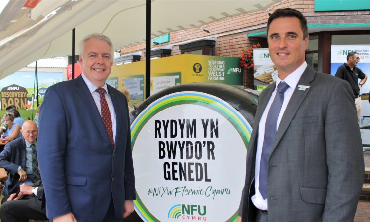 First Minister: Unfettered access to EU paramount for Welsh farming