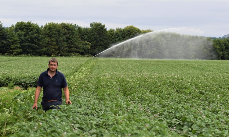 3 weeks without rain: How tech is helping one Perthshire potato farmer hold up