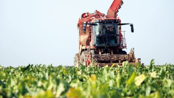 Bayer to appeal EU General Court ruling on neonicotinoids ban