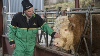 £4.5 million Crown Estate investment to support Scottish farm tenants