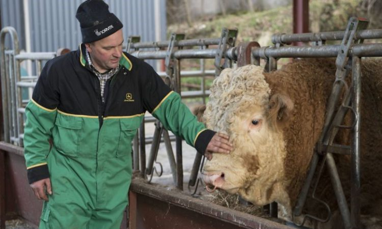 Poll: Nearly 90% of Scots say farming is vital to economic growth