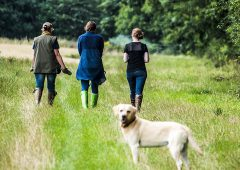 Scottish rural organisations plea with those exercising in the countryside