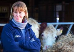 Calls for new trade and food panel to uphold British agri-food standards