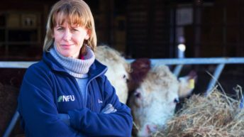Batters: 'I want British farmers to remain the number one supplier to the UK market'