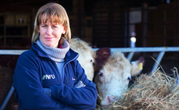 'The future of British food and farming is at stake' – Batters