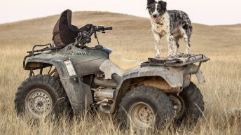 5 things you should think about every time you jump on the quad