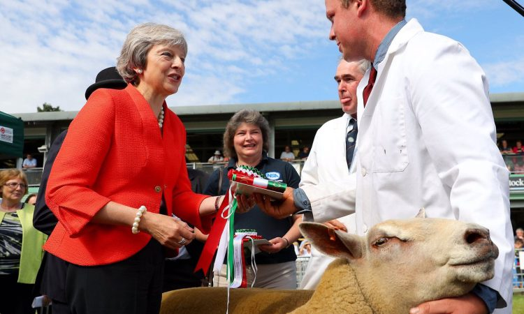 May departure: Farming's reaction to PM's resignation
