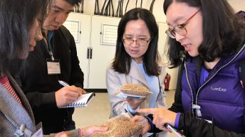 Chinese buyers explore further UK trade opportunities