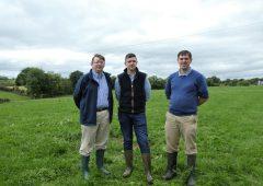 Grazed grass is key to success on Tyrone beef farm