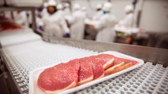 China opens doors to British beef