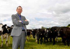 Almost two-thirds of Dale Farm suppliers manage 3p/L bonus