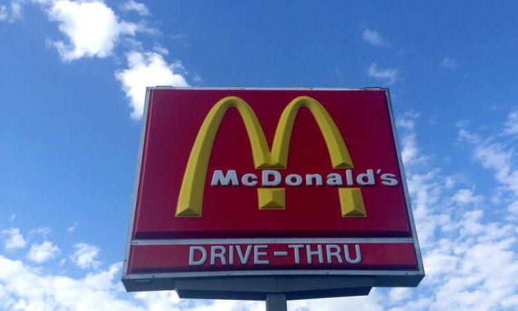 Cattle take McDonald's drive-thru detour following escape