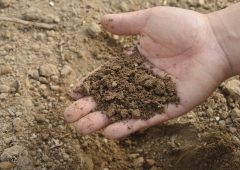 New soil sequestration tool launched to help farms plan carbon footprint reduction