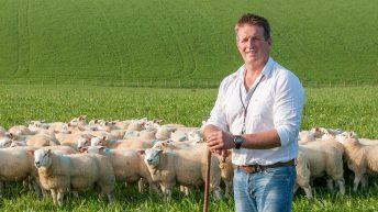 How Scotland's border farmers are preparing for winter
