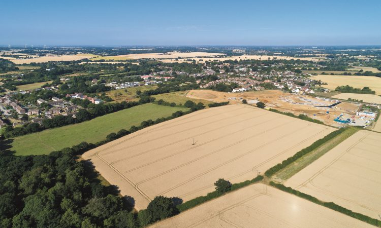'Low supply and pent-up demand' sees farmland values rise 3% in 2020
