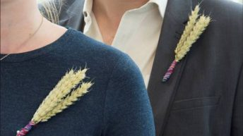 Westminster joins NFU to Back British Farming