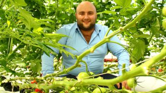 New 'Jacuzzi in a bag' system to allow growers to up yields while using less