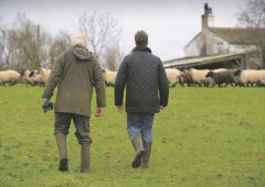 Last chance to apply for scheme which saves farms an average of £50,000