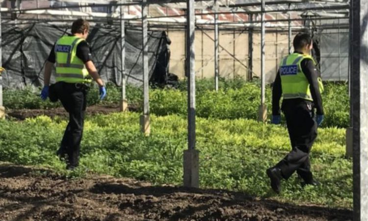 8 potential slavery victims rescued from Cambridge farm