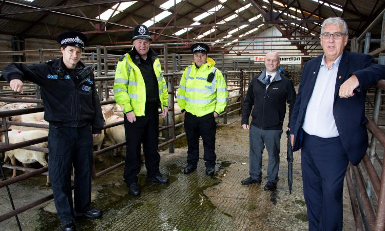 Livestock rustlers are closer to home than you think, warns police boss