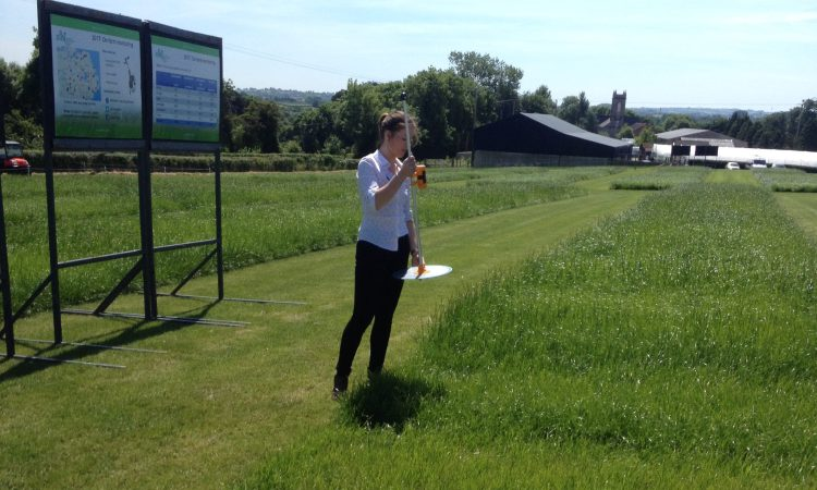 £362,000 boost announced for 2 fish and farming research projects