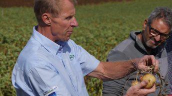 Potential Diquat ban challenges future harvest