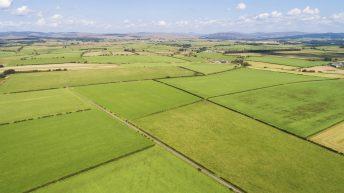 9,000ac Scottish borders estate hits the market at £19.5 million