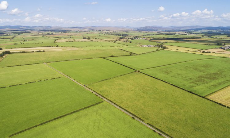 Deadline approaching for 'rare' 9,000ac borders estate