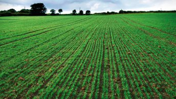 Changes to phosphate offtake values 'could be justified'