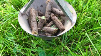 Now is the ideal time for soil-sampling, says NI agriculture department
