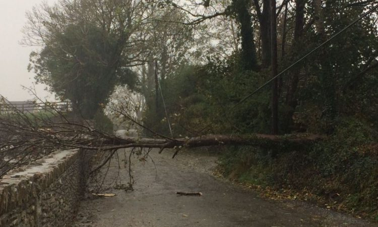 Storm Callum: Your 7-point storm repairs safety checklist