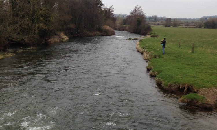 NI Water fined £16,500 for polluting 1.2km of a Tyrone river