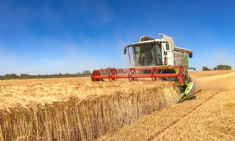Mixed fortunes as NI crop yields and production estimates published