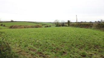 Agricultural land provides 40ac and winter accommodation for livestock